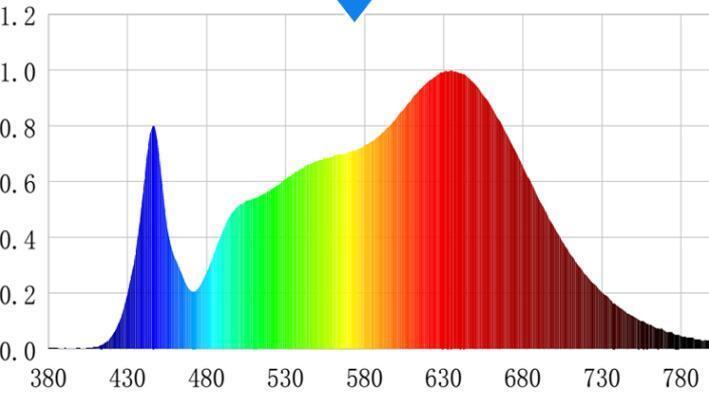 LED影视灯与视频补光灯如何选择(图5)